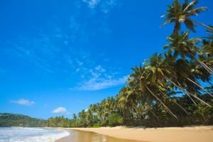 Plage au Sri Lanka
