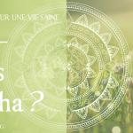 Dosha Kapha : 5 conseils diététiques pour une vie saine