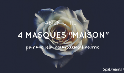 Rose blanche 4 masques maison blog SpaDreams