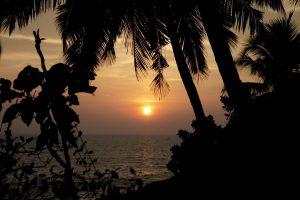 nikki's nest couché de soleil inde
