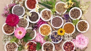 plusieurs récipients avec des plantes ayurvédiques pour maigrir avec l'Ayurveda